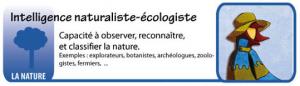 Intelligence naturaliste - écologiste - Les intelligences multiples - théorie du docteur Howard Gardner