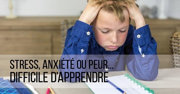 Stress, anxiété ou peur : difficile d'apprendre