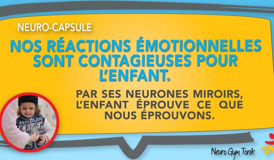 Nos réactions émotionnelles | Neuro-Capsule