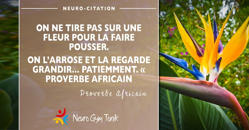 Observer et accepter  | Neuro-Citation de la semaine